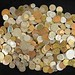 5014. (300+) World Coins
