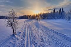 Skiing (timo_w2s) Tags: winter lake snow finland frozen lapland kuusamo hdr ruka skitrack