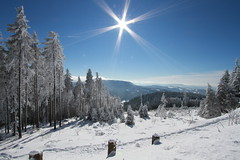 black forest winter (jomaot) Tags: blue schnee trees winter light sky snow cold ice sunshine weather canon germany season landscape deutschland europa europe view himmel wideangle bluesky blau distance baden kalt eis ultrawide schwarzwald blackforest gettyimages winterwonderland klte winterlandschaft 10mm weitwinkel badenwrttemberg mummelsee 1036 schwarzwaldhochstrasse b500 sonnenstern seibelseckle jomaot