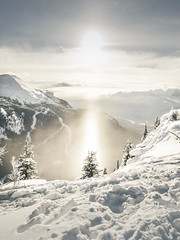 Shine (nicholasdyee) Tags: trees winter sky sunlight mountain snow canada ski mountains tree nature clouds landscape scenery skiing holy evergreen alberta banff rockymountains lakelouise nicholasyee nicholasdyee