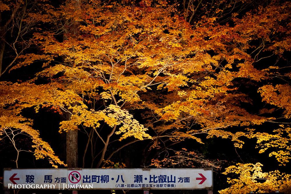2012_Momiji_35