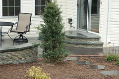 After- Paver Steps and Patio (The Sharper Cut Landscapes) Tags: landscaping steps maryland patio laurel privacy paver smallspace plantings landscapedesign seatwall uppermarlboro hardscape ephenry entertainmentarea landscapecompany devonstone thesharpercut