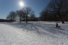 "Prospect Park Sunsnow • <a style=""font-size:0.8em;"" href=""http://www.flickr.com/photos/92226407@N08/8501597455/"" target=""_blank"">View on Flickr</a>"