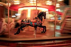 carousel (Rebecca Haranczak) Tags: sf sanfrancisco longexposure carnival horse motion blur color childhood night lights nightlights dream slide carousel fantasy wharf twirl pan pier39 merrygoround panning nightphotograpy canon6d