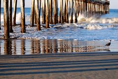 Pier Lines (hecticskeptic) Tags: california fog pelican otter inversion cayucos sanluisobispocounty curlew cayucospier markamorgan