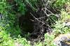 Well/cistern