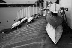 (Jacobo Canady) Tags: ro river boats boat sevilla andaluca guadalquivir kayak barca seville andalucia canoe rowing barcas canoa rower remero remando roguadalquivir guadalquivirriver