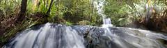 It Falls in the Distance (edwinemmerick) Tags: longexposure panorama nature water creek photoshop landscape waterfall nikon stream stitch australia bluemountains le nsw slowshutter newsouthwales hazelbrook edwin d60 cs3 emmerick edwinemmerick