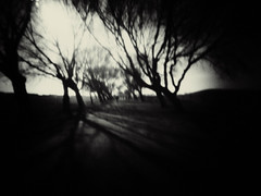 wavertree park (the mystery) (fotobananas) Tags: park monochrome mystery liverpool pen olympus pinhole wanderlust ep1 wavertree fotobananas wanderlustcameras pinwide