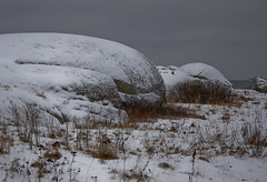 Snow on the rocks (AstridWestvang) Tags: sea snow coast rocks larvik svaberg eftang