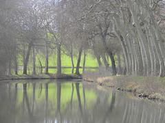 Bucolique, Lauragais, Canal du Midi, France.