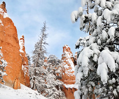 Bryce Canyon snow below sunset point (houstonryan) Tags: park county winter snow art home print landscape photography utah photographer ryan hiking snowy houston canyon hike fresh system national fallen layer bryce redrock sell decor garfield hang freshly snowed houstonryan