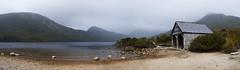 The Dove Lake Boat Shed (edwinemmerick) Tags: lake nature water weather fog photoshop landscape nikon rocks shoreline australia shore tasmania tassie boathouse edwin boatshed dovelake cradlemountain d60 cs3 emmerick edwinemmerick