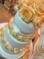 Apricot & White Wedding