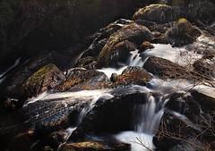 IMG_4962 (Michael Catania Photography) Tags: water wales river rocks betwsycoed conwy afon llugwy