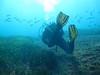 Aquanature sortie technique N2-N3 le Petit Mejean_07