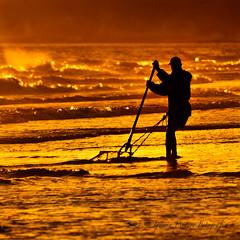 Mariscador (Iguana Picture) Tags: portugal atardecer mar agua gente lugares albufeira elalgarve