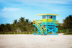 Dream Beach (Edi Eco) Tags: life sky usa sun tree tourism sol praia beach strand canon coast sand florida areia miami united guard tourist céu palm shore states waterside g12