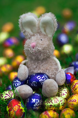 Happy Easter!! (GeorgieAriel) Tags: holiday cute rabbit bunny easter toy photography nikon bokeh chocolate eggs