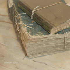 old books (idni . idniama) Tags:
