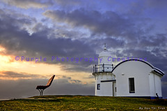 Tacking Point Lighthouse (Purple10YT) Tags: lighthouse architecture sunrise landscape morninglight lighthouses purple goldenhour yt tackingpoint tackingpointlighthouse yeutran purplephotographycreations yeuthitran yeuthitran httpwwwfacebookcompagespurplephotographycreations148743085221883