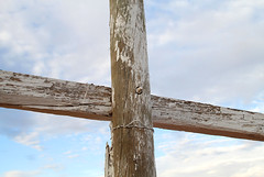 The White Cross (cowyeow) Tags: wood old travel abandoned grave religious peeling cross desert god painted faith religion belief australia roadtrip christian faded forgotten believe wa christianity westernaustralia gravesite woodcross whitecross