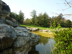 Bains d'Apollon (Clioeos) Tags: castle fountain fleurs garden frankreich grove jardin versailles schloss apollo francia fontaine castello  castillo  kasteel bassin bosquet apollon zamek    francja         kshtjell