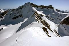 Wildhorn in the background (sylweczka) Tags: snow ski mountains alps switzerland tour glacier skitour lauenen coldupillon arpelistock sylweczka sommetdesdiablerets gltehore