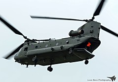 RAF Chinook Display Team (lucaban87) Tags: canon aviation military airshow helicopter 7d chinook spotting raf riat royalinternationalairtattoo spotter royalairforce raffairford avgeek aviationphotography aviationphotos chinookdisplayteam avporn aviationporn