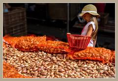 La petite vendeuse d'chalotes / The small salesgirl of shallots - Foire de l'ail et du basilic / Fair with garlic and basil - Tours (christian_lemale) Tags: foire fair ail garlic basilic basil tours touraine france nikon d7100 chalotes shallots fille girl