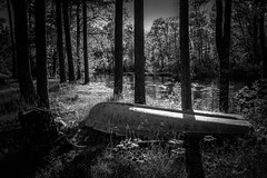 what i will remember.......explored...... (A. Wrench) Tags: bw nature river stream water rowboat boat shore riverbank shoreline pines trees sunset summer wisconsin northwoods north monotone stump treetrunk sunlight shadows woods forest