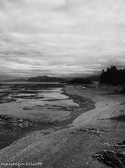 """Curving"" (maureen.elliott) Tags: blackandwhite shorline curves stlawrenceriver bicnationalpark quebec lowtide nature outdoors"