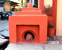 Housing God (Shrimaitreya) Tags: streetshrine waysideshrine pune maharashtra mandir shrine india indian hindu hinduism popularreligion street tulsi basil