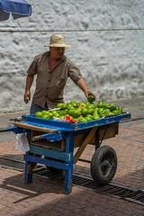 aguacate (_Maganna) Tags: avocado street man seller vendor streetvendor avo bogota colombia latin cart outside people green travel