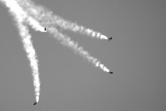 PAPEA en blanco y negro (FlickrdeChato) Tags: ntm16 tigermeet zaragoza papea parachute freefall skydivers paracaidistas byn bw smoke