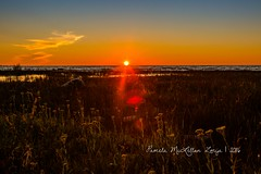 20160828-IMG_7772-WM (Pamela McLellan Zmija) Tags: pamelamclellanzmija saugeenshores portelgin sunset beach lakehuron goblesgrove sunshine