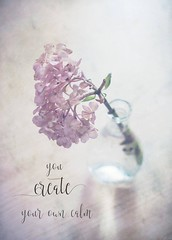 You create your own calm ({ Rssy }) Tags: textures pink quote stilllife flowers