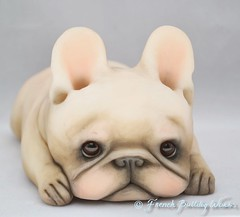 Macaron (French Bulldog Works) Tags: dashagoux frenchie frenchbulldog bulldog french dasha works frenchbulldogworks fbw goux puppy smooshie flat ooak handmade doll toy art sculpture portrait photography pet cream
