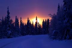 Sunset (timo_w2s) Tags: winter sunset snow finland lapland kuusamo ruka