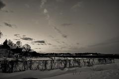 Beauty in the wake of Nemo (Carly Sabatino) Tags: ri winter sunset usa snow storm ice nemo february warwick conimicut freephotos