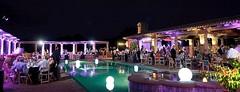 Purple Lighting - Architectural Lighting - Glow Accessories - Pool Lighting - Escondido Golf Club