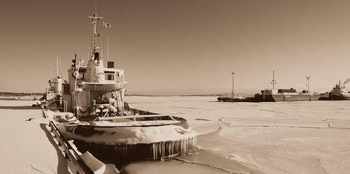 Tugboats waiting for ice to thaw