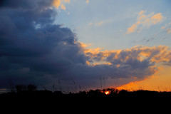 PennypackEco_02_15_2013_700_9021 (Jeff A1) Tags: sunset pennypack