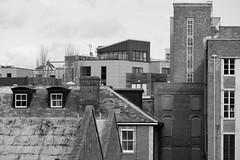 Carrow skyline (f3liney) Tags: bw white black skyline architecture buildings mono rooftops norwich colmans carrow
