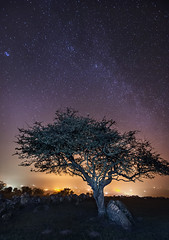 'In A Quiet Corner' - Capel Lligwy, Anglesey (Kristofer Williams) Tags: longexposure sky tree night stars landscape lowlight astrophotography churchyard hawthorn lightpollution milkyway anglesey northwales moelfre hencapellligwy noctography capellligwy Astrometrydotnet:status=failed Astrometrydotnet:id=alpha20130382037958