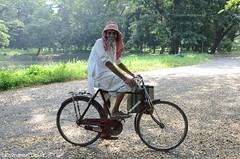 Cycles at Ninety Three (emmydavid) Tags: old man tree big kolkata banyan active