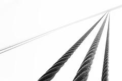 Bridge of lines (Carlos.Dez) Tags: sf california bridge bw abstract monochrome lines fog canon puente eos golden monocromo gate san francisco sigma cable os 17 abstracto 70 niebla lineas hsm 60d