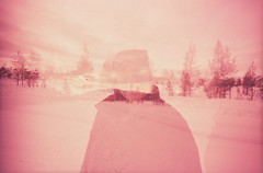 Lapland 2013 (ElectraHeart27) Tags: pink snow finland husky lapland levi 100 expired sensia