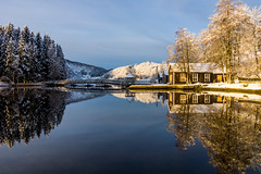 Mirror and gold [Explore #10] (Richard Larssen) Tags: blue winter sea snow reflection tree norway mirror norge cabin day sony norwegen clear richard flekke scandinavia a77 sogn fjordane larssen
