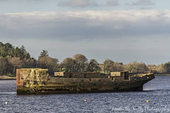 Boat ruin at Ballina Quay (linda_mcnulty) Tags: trees ireland sea water forest pier boat ship ruin quay mayo remains ballina